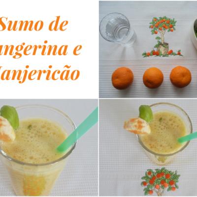 Sumo de Tangerina e Manjericão